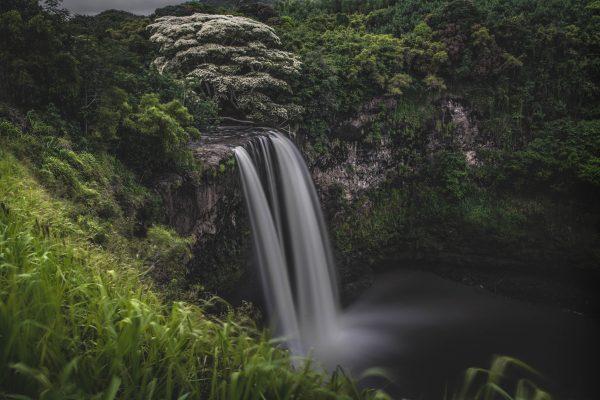 Kauaii-3141