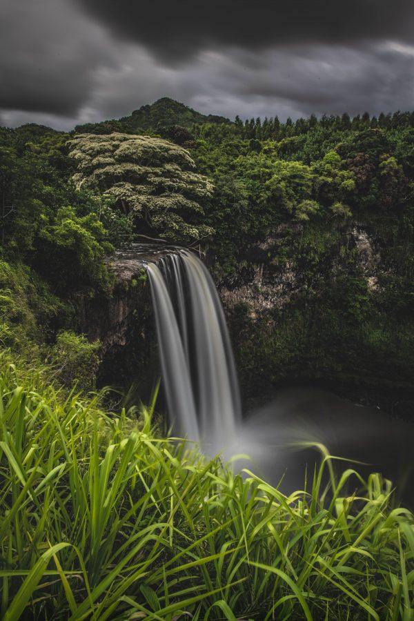 Kauaii-3146